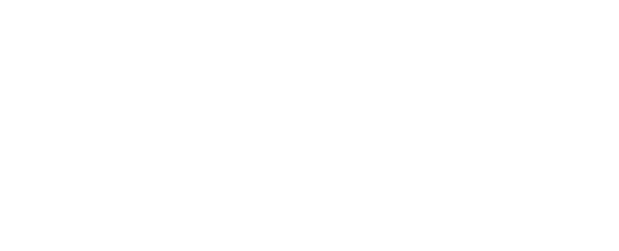 REV 4 XP SS web